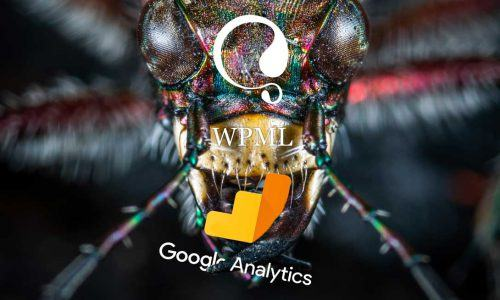 Een WPML bug die je Google Analytics en WooCommerce in de war schopt